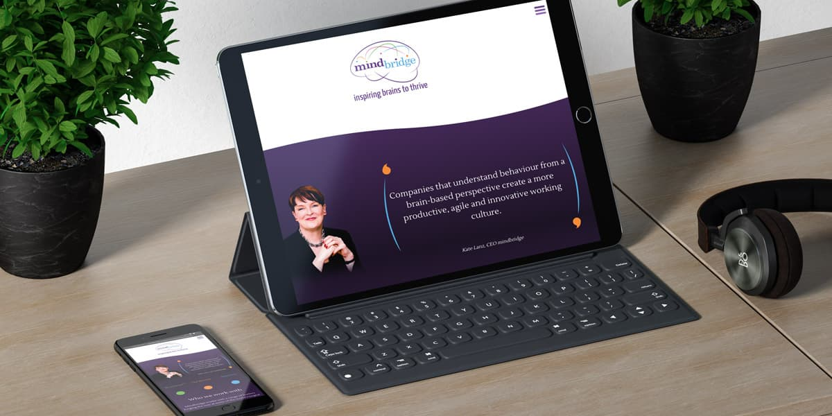 mindbridge website